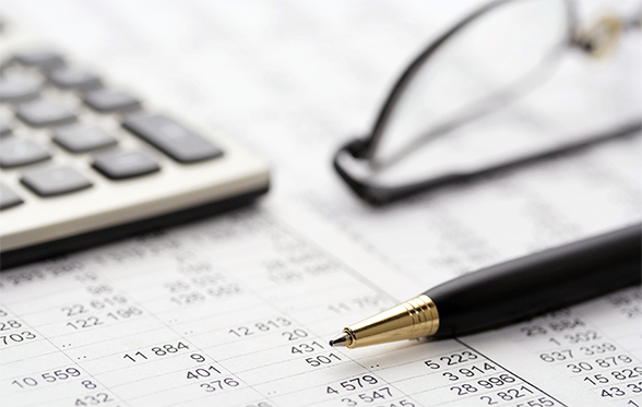 Professional Payroll Management Services