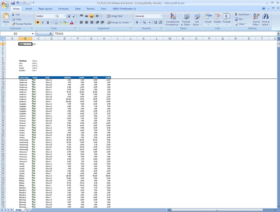 PDF converted into and formatted as an Excel file